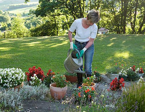 gardening-music_3350010b